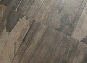 ceramiche-ascot-petrifiedwood
