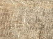 ceramiche-energieker-sequoia