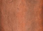 rondine-amarcord