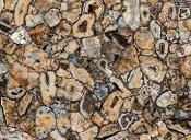 ceramiche-fiandre-agatamaximum